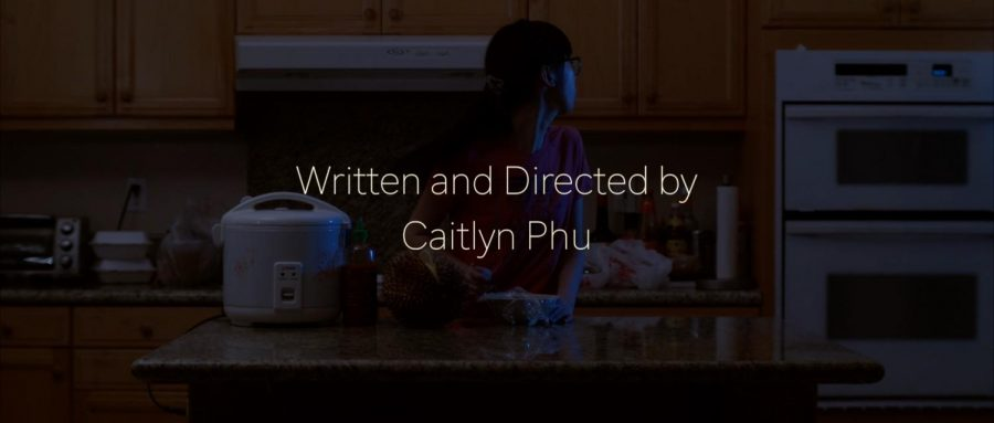 A Step Towards an Identity: An Interview with Caitlyn Phu
