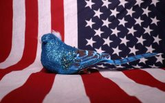 Bernie Sanders is commonly represented by a blue bird.