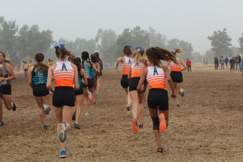 (Left to right) Claire Lewis, Morgan Levine, Quinn Roldan, Luna Centeno, and Sierra Green warm up minutes before their race. Photo by: Amber Juarez