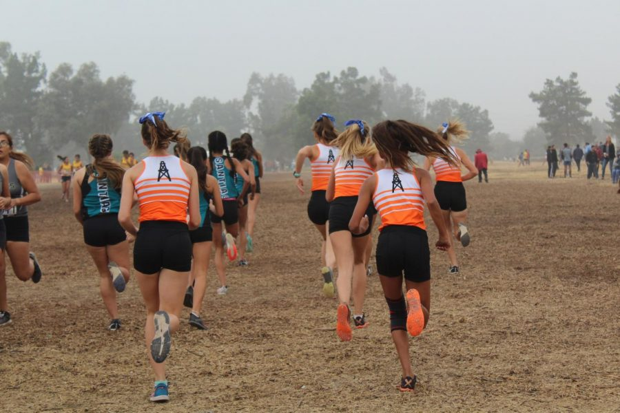 First Time in Thirty Years: Girls Cross Country Qualifies for CIF