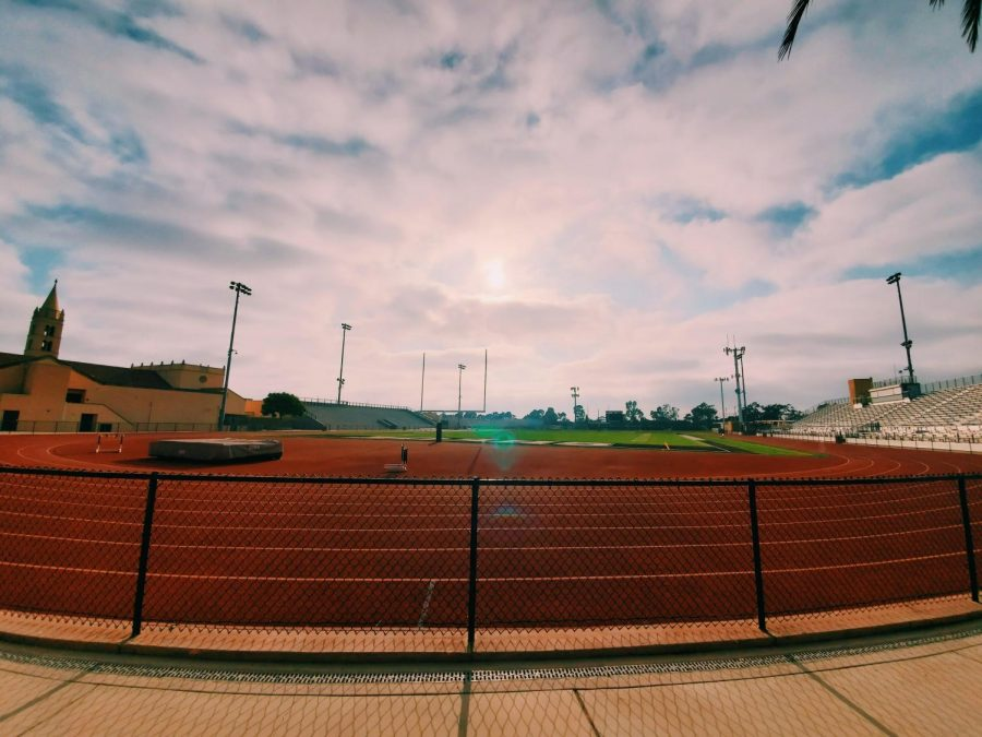 Same field, new year. Photography by: Charlotte Nguyen and Julia Glascoe.