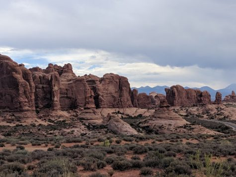 Arches National Park. Photography by: Julia Glascoe.