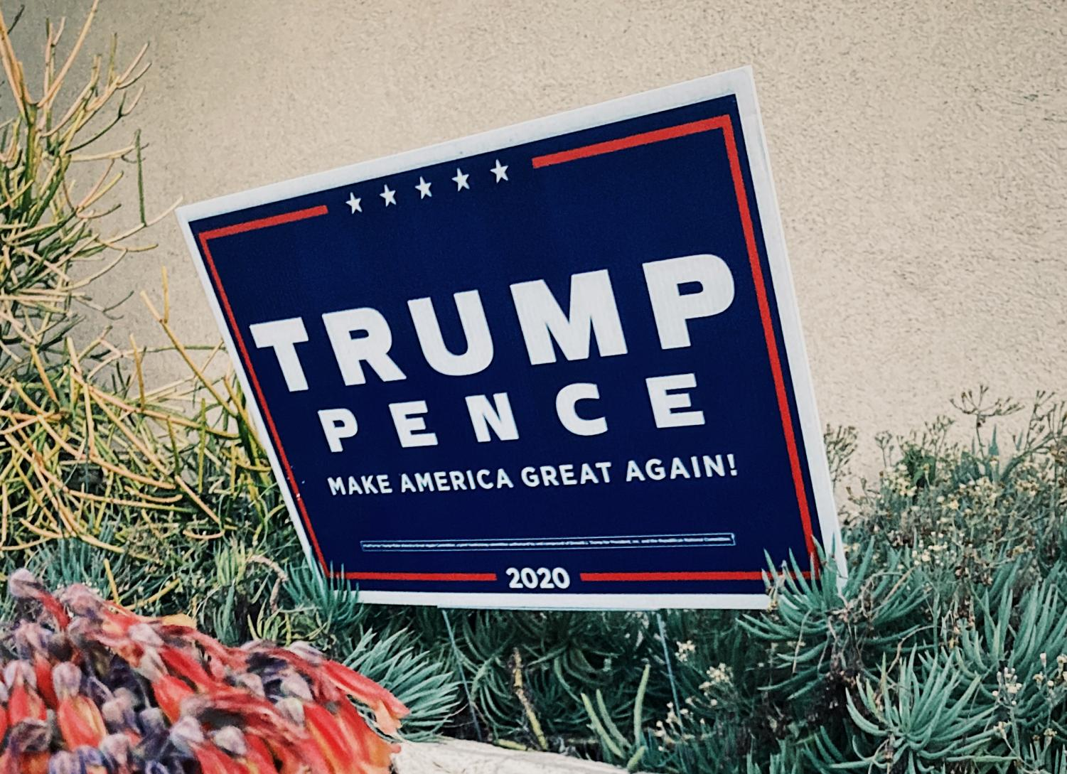 Trump Campaign Sign January 5th, 2021.  Photography by: Tess Walshe.