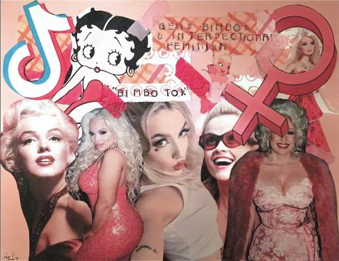 Gen-Z and traditional bimboism collage. Original artwork by: Sarah Hart.